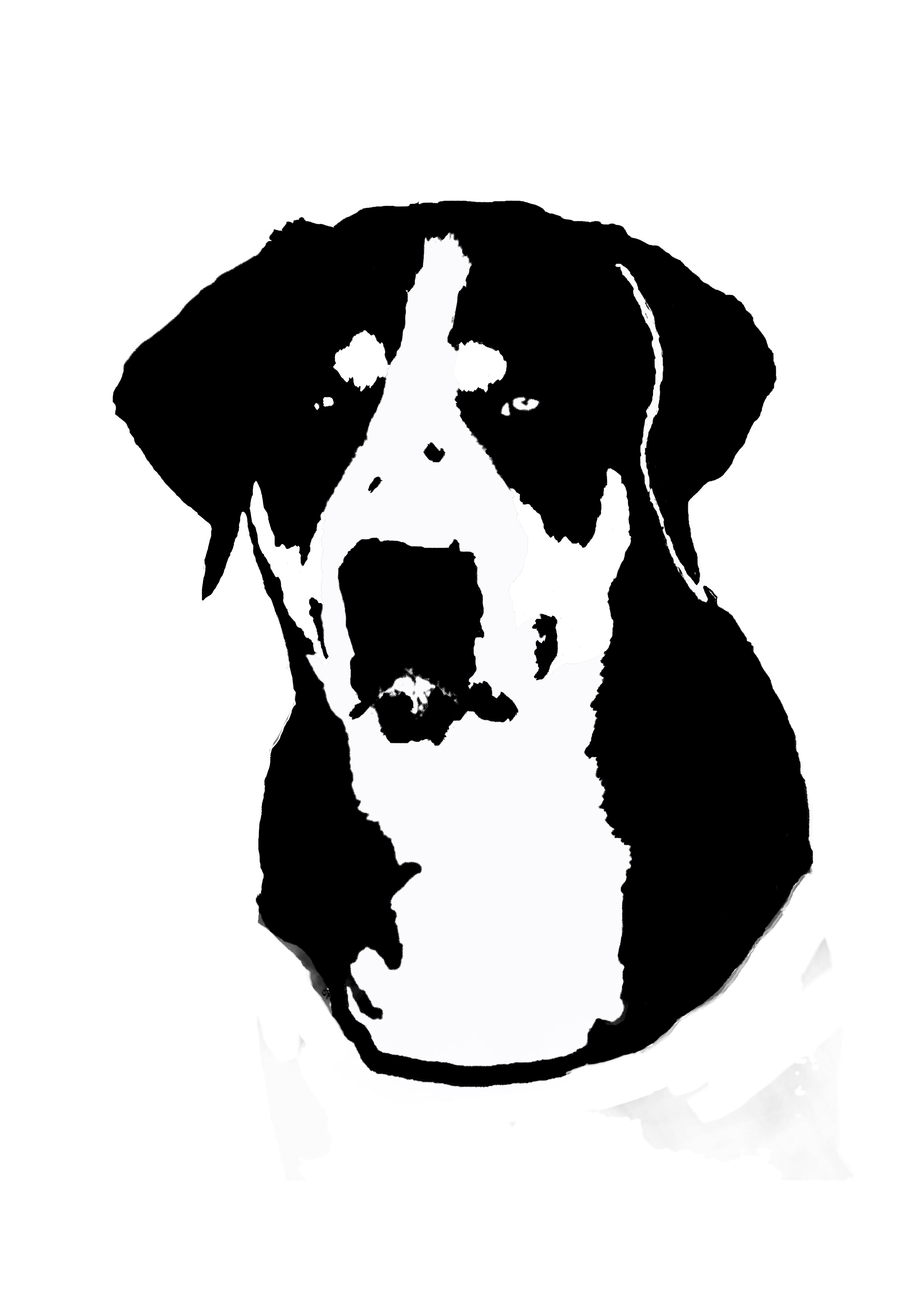 Greater swiss mountain dog head vinyl sticker decal